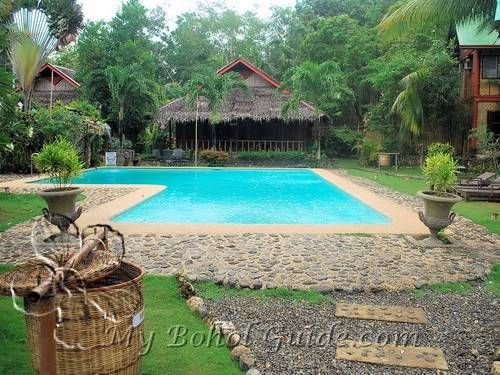 Oasis resort my bohol guide for Swimming pool oasis